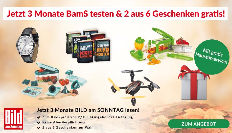 BamS/00_2018_teaser/10157681_2aus6_Herbst.png